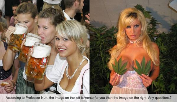 Beer is Bad & Marijuana is Good!